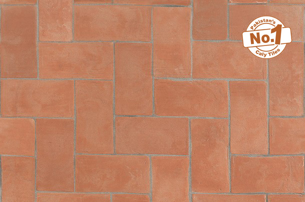 Pak clay tiles industry red fire brick house front wall facing tiles images in rawalpindi islamabad images