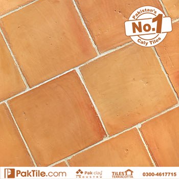 Natural Red Colour Terracotta Bathroom Floor Tiles Design White Grout 8x8 inch Images in Lahore