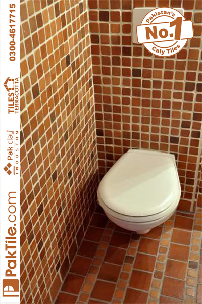 Buy Public bathroom toilet faux veneer brick wall tile backsplash area home design images lahore Pakistan