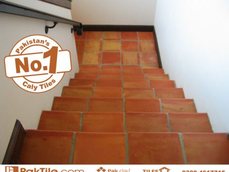 Red Bricks Wall Tiles Pak Clay Tiles