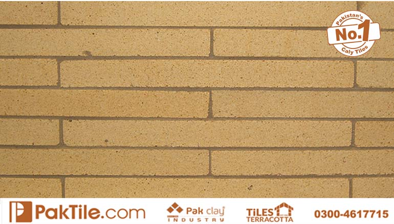 9 Refractory fire bricks price in pakistan wall facing tiles design rates ideas near me islamabad images