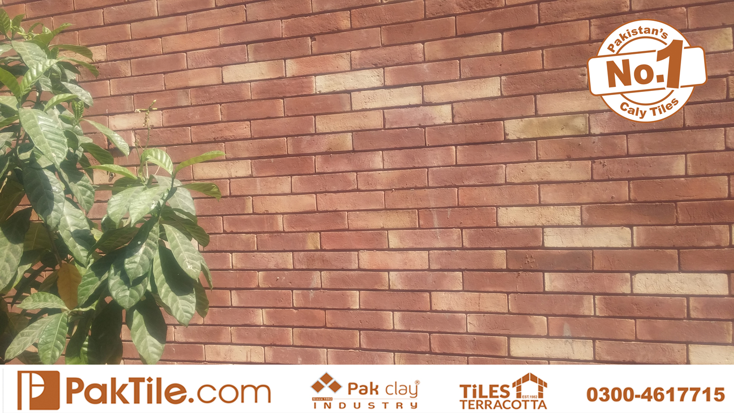 Pak Clay Red Gutka Brick Tile Texture Rate in Lahore Pakistan Outside Boundary Front Face Tiles Images